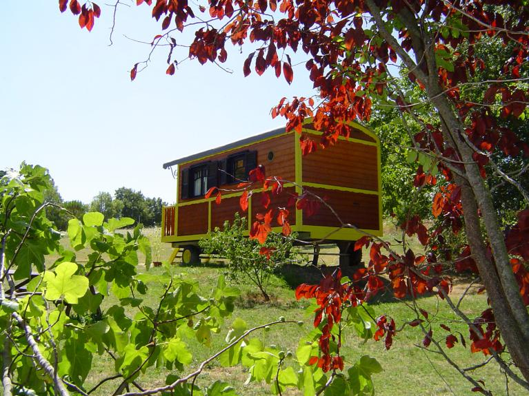 our 2 Gypsy caravans (2 adults & 3 children per unit)  accommodations provides the ideal peaceful location.